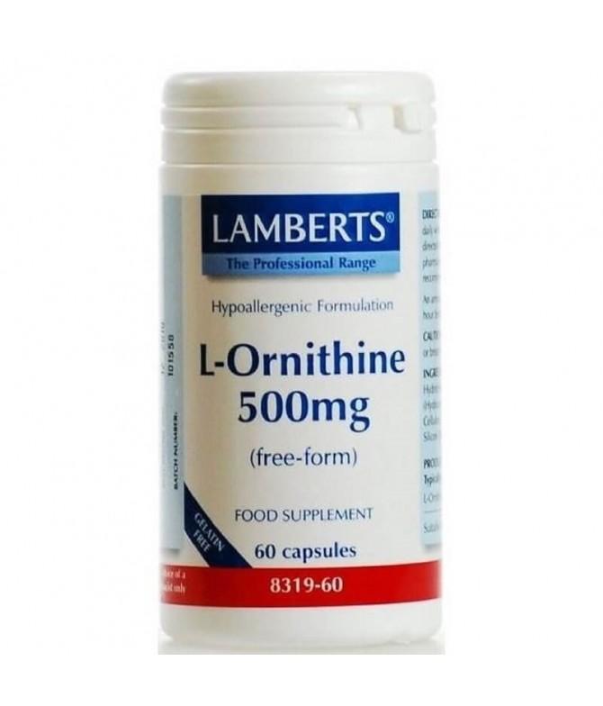 L-Ornitina HCL 500mg Sist Imunitário 60un