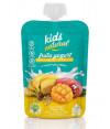 Snack Fruta Tropical Iogurte Multicereais 100gr