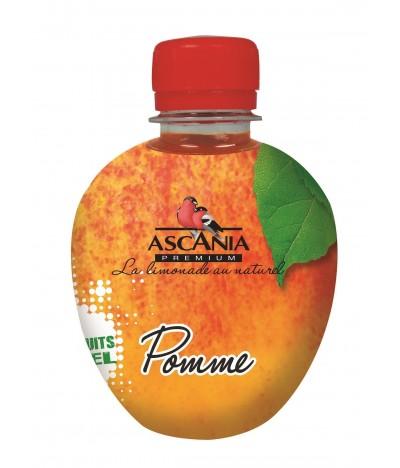 Ascania Zumo de Manzana 33cl
